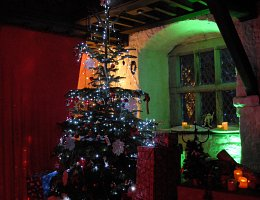 Christmas tree in the castle