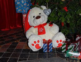 Winter Wonderland - teddy under the tree